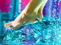 Процедуры для ног — правильно и последовательно заботимся о коже и суставах + 66 фото