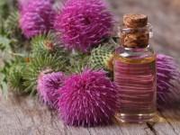 Репейное масло для волос — полезные свойства и лучшие методы их применения на фото!