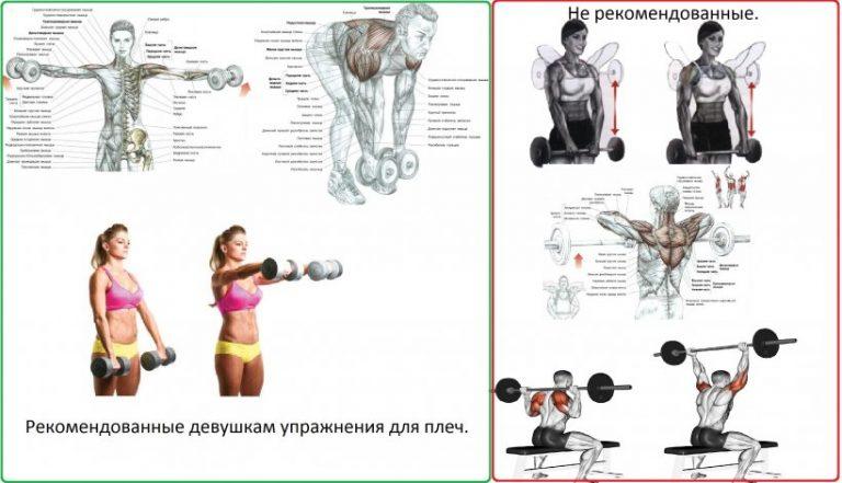 Упражнения для девушек на плечи в домашних условиях